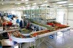 AGV paprika harvest trolley | Image 12