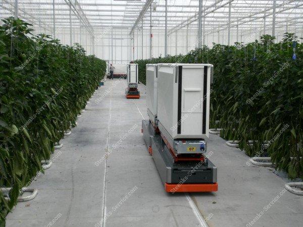 AGV paprika harvest trolley | Image 11