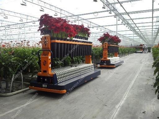 AGV gerbera harvest trolley | Image 6