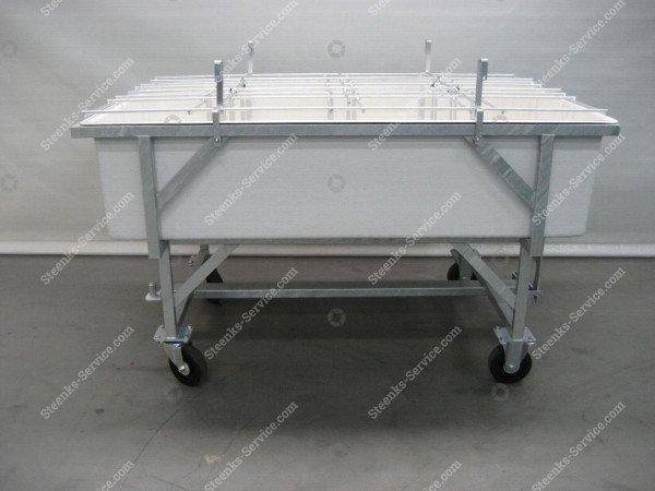 Rozen Verzamelwagen   Afbeelding 2