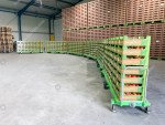 Harvest tomatoes trolley Greencart THC-L | Image 7