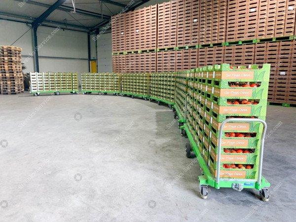 Tomaten oogstwagen Greencart THC-L | Afbeelding 7