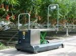 Blattpflückwagen Greencart LPC   Bild 2