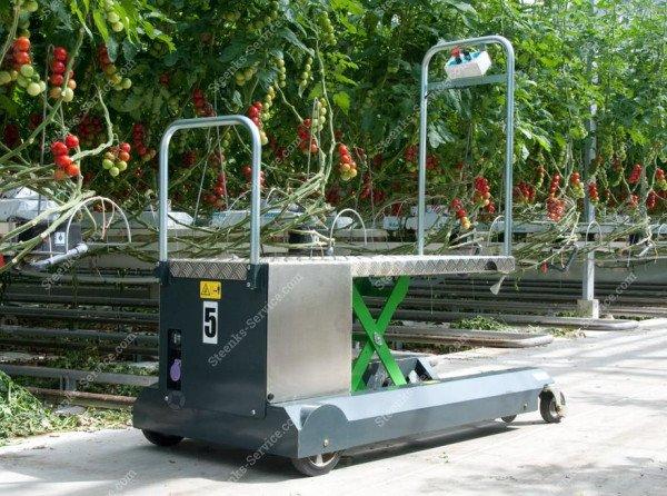 Bladplukwagen Greencart LPC   Afbeelding 2